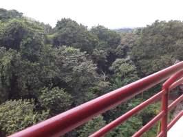 Clayton Park Ancón, Panamá