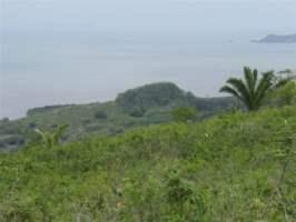Playa Leona La Chorrera