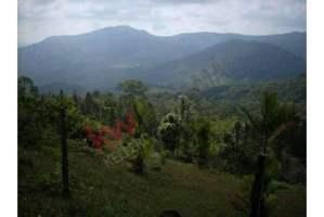 Pacora Panamá