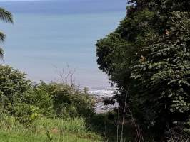 Puerto Armuelles Baru