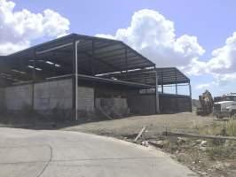 Betania Panamá
