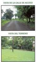 Mendoza La Chorrera